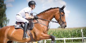 equestrian sports race using cloudtimer